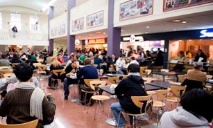 Stamp Student Union Food Court Vendors Lag In Recyclable Compostable Containers